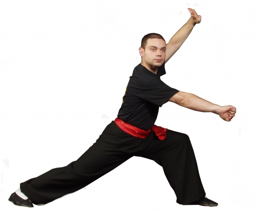 person in a kung fu stance